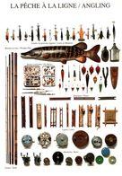 CPM - PÊCHE à La LIGNE - Objets De Pêche à Collectionner ... - Edition Nlles Images - Pesca
