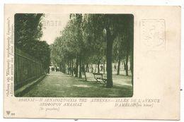 GRECE ENTIER 10A CARTE POSTALE ATHENES ALLEE DE L'AVENUE D'AMELIE 1919 - Postal Stationery