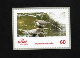 BRD - Privatpost - Brief Und Mehr - Vögel Birds - Wasseramsel (Cinclus Cinclus Gularis) - [7] Federal Republic