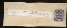 Streifenband > Ernst Räschke (906a) - Postwaardestukken