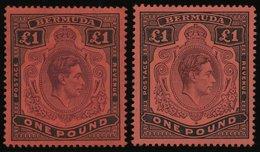 BERMUDA-INSELN 116b *, 1943, 1 £ Schwarz/braunpurpur, Gezähnt 14, (SG 121b Und E), Falzrest, 2 Prachtwerte - Bermudes