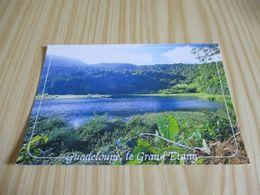 Capesterre (Guadeloupe).Le Grand Etang,près Des Chutes Du Carbet. - Pointe A Pitre