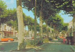 11 - CASTELNAUDARY / COURS DE LA REPUBLIQUE - Castelnaudary
