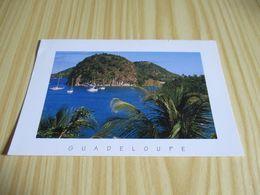 Les Saintes (Guadeloupe).Le Pain De Sucre. - Guadeloupe
