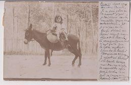 CARTE PHOTO ECRITE EN 1904 : PETITE FILLE SUR SON ANE - CACHAT AMBULANT DE NANTES A SEGRE - 2 SCANS - - Anes