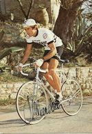 CARTE CYCLISME ALAN VAN HEERDEN SIGNEE TEAM PEUGEOT 1979 - Radsport