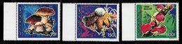 Comoro Isl.(Comores)-1992, Mi.982-984, Mushrooms, MNH** - Pilze