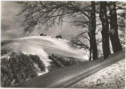 XW 2998 Rieti - Monte Terminillo - Panorama / Viaggiata 1957 - Rieti