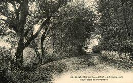 St Etienne De Montluc * Sous Bois Au Perrorteau - Saint Etienne De Montluc