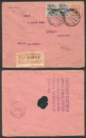 PERU: 1/FE/1916 LIMA - USA: Registered Cover Franked By Sc.183 (20c. Castilla) + 196 Pair, With Detroit Arrival Backstam - Peru
