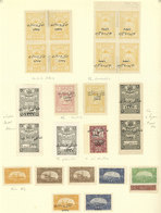 TURKEY - ANATOLIA: VARIETIES: Album Page Of An Old Collection Full Of Good Varieties: Double Perforations, Inverted Over - 1920-21 Anatolie