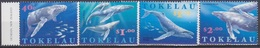 Tokelau, N° 242 à 245 (Baleines à Bosse, ...), Neufs ** - Tokelau