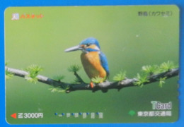 Japan Japon Martin Fisher Kingfisher Bird Uccello Aves Pajaro Tcard - Birds