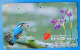 Japan Japon Martin Fisher Kingfisher Bird Uccello Aves Pajaro Iris Flower - Birds