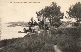 D22  ILE DE BREHAT  Un Coin De L'Ile - Ile De Bréhat