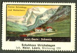 """Magdeburg 1913 """" Bild Schweiz Suisse Switzerland Kleine Scheidegg """" Vignette Cinderella Reklamemarke - Cinderellas"""