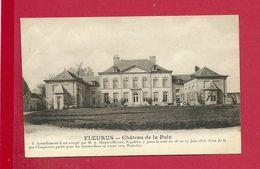 C.P. Fleurus =  Le  Château  De La Paix - Fleurus