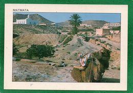 Matmata Habitation Traditionelle - CPM  CHAMEAU  EDIT TANIT état Impeccable - Tunisie