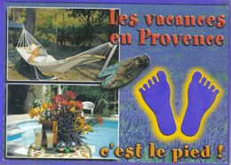 Carte Postale Cigale  En Provence C'est Le Pied  Ricard Pastis Très Beau Plan - Animaux & Faune