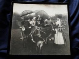 Photo Grand Cabinet Anonyme - Groupe En Petit Attelage Aux Vendanges, Ca 1895-1900 L514 - Anciennes (Av. 1900)