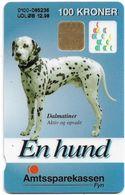 Denmark - Danmønt - Amtssparekassen Fyn Dalmatiner Dog - DD128C - 100Kr. Exp. 12.1998, 1.163ex, Used - Dinamarca