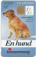 Denmark - Danmønt - Amtssparekassen Fyn Golden Retriever Dog - DD141A - 100Kr. Exp. 07.1998, 1.100ex, Used - Dinamarca