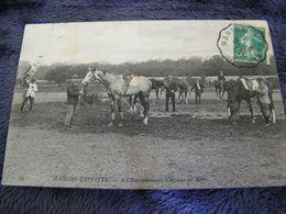 C.P.A.- Les Sports - Hippisme - Maisons Laffitte (78) - A L'Entrainement - Chevaux Au Repos - 1908 - SUP - (DH 100) - Hípica