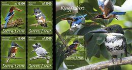 Sierra Leone 2020, Animals, Kingfisher, 4val +BF - Sierra Leone (1961-...)