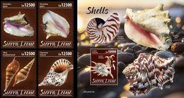 Sierra Leone 2020, Shells, 4val +BF - Sierra Leone (1961-...)