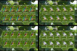 Sierra Leone 2020, Animals, Kingfisher, 4sheetlets - Sierra Leone (1961-...)