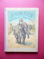 Les Animaux Sauvages Et Domestiques Pour Les Enfants Garnier Paris 1892 Tavole - Livres, BD, Revues