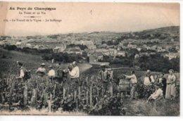Au Pays Du Champagne-La Vigne Et Le Vin-Le Travail De La Vigne-Le Sulfatage - France