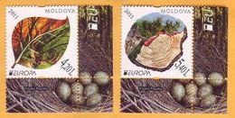 2011 Moldova Moldavie  Europa Cept  Forest, Trees, Flowers, Mushrooms, Fauna 1v Mint - 2011