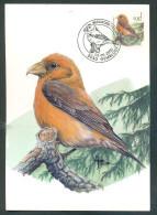 OCB Nr  2918 Buzin Fauna MK Stempel   5030 Gembloux - 1985-.. Oiseaux (Buzin)