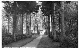 SASBACH - Avenue Et Monument Turenne - Sasbach