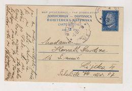 YUGOSLAVIA 1951 AMB-TRAIN Cancel VIROVITICA-NOVSKA Postal Stationery - Storia Postale