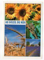 Au Soleil Du Midi --1998--Vues Diverses ( Cigale,tournesol,blé,lavande ) - Insectos