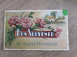 Cpa 44 St Herblain Souvenir - Saint Herblain