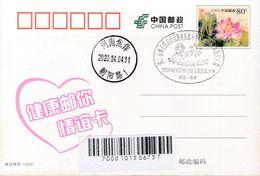 CHINA  POSTCARD   WITH HENAN JIAOZUO  ANTI COVID-19 INFORMATION - Chine