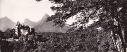 74-ENVIRONS D' ANNECY- LE CHATEAU DE MENTHON-VUE PANORAMIQUE -ANIMEE-DIM 22X9 CM - Annecy