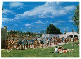 (B 14) Australia - NSW - Forbes Swimming Pool - Altri