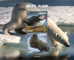 LIBERIA - 2020 - Arctic Ocean - Perf Souv Sheet - Mint Never Hinged - Liberia