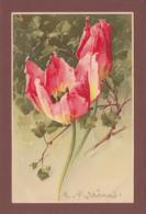 Catharina KLEIN - Signé - Fleurs - Tulipe - Klein, Catharina