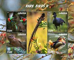 LIBERIA 2020 - Rare Birds II, Duck. Official Issue [LIB200225a] - Patos