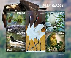 LIBERIA 2020 - Rare Birds I, Duck. Official Issue [LIB200224a] - Ducks