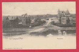 De Haan / Coq-sur-Mer - Panorama ... Oude Villas - 1903  ( Verso Zien ) - De Haan