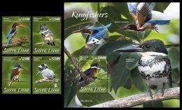SIERRA LEONE 2020 - Kingfishers, 4v + S/S Official Issue [SRL200214] - Birds