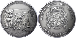 2.000 Francs, 2013, Africa - Babylöwen, 3 Unzen Silber, Antik Finish, In Kapsel Mit Zertifikat, St. Auflage Nur 500 Stüc - Gabon