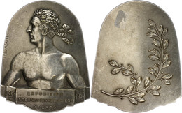 Belgien, Glockenförmige, Versilberte Bronzeplakette (ca. 80,50x65mm, Ca. 129,47g), 1930, Von A. Salle, Auf Die Internati - Monedas