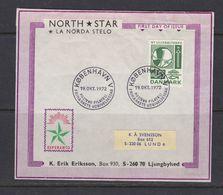 ESPERANTO - UNUSUAL FDC NEW BRIDGE PONT BRÜCKE PUENTE OVER LILLE SUND -  DENMARK  DANMARK DÄNEMARK 1972 MI 532  Slania - Esperanto